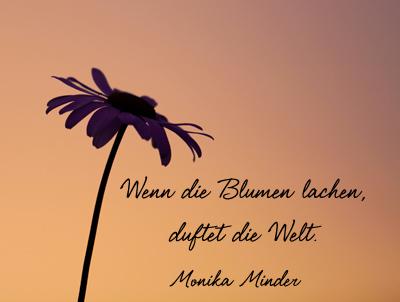 Sprueche Blumen Zitate Zum Leben