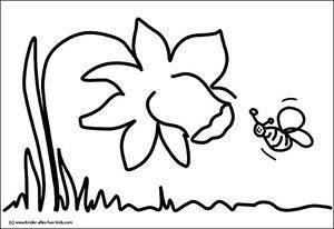 Blumenbilder Kostenlos Schone Fotos Und Zeichnungen Mit Floralen