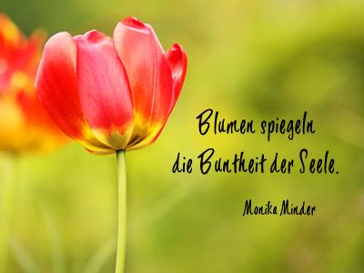 sprüche über blumen Bildersprüche   Blumenbilder mit Zitaten und kurzen Weisheiten sprüche über blumen